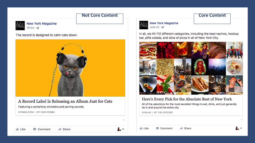 Example of Core Audience Facebook Posts